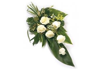 Funeral &Sympathy